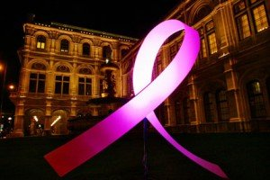Pink-Ribbon-night_2014_klein-300x200