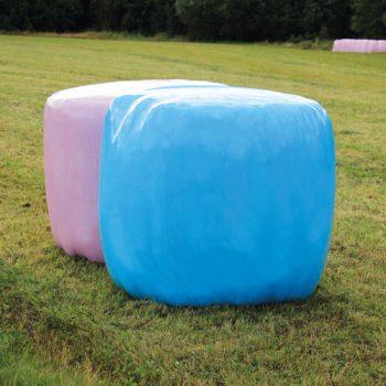 Pink-Blue17