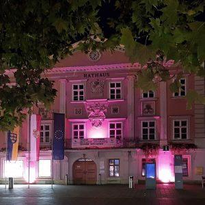 Rathaus_Beleucht_Wr Neustadt